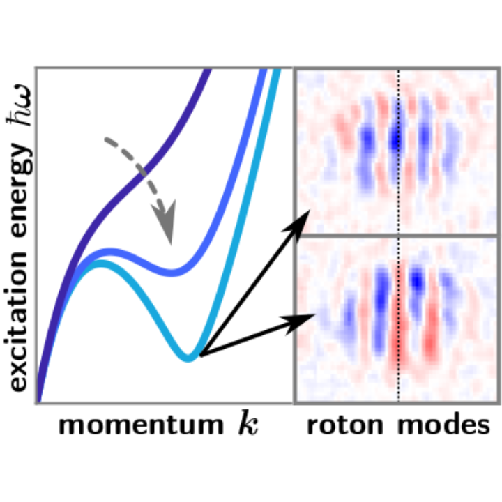 Schematic visualization of the softening roton excitation in the dispersion relation of an elongated dipolar BEC and example images of the measured in-situ density fluctuations showing the two roton modes.