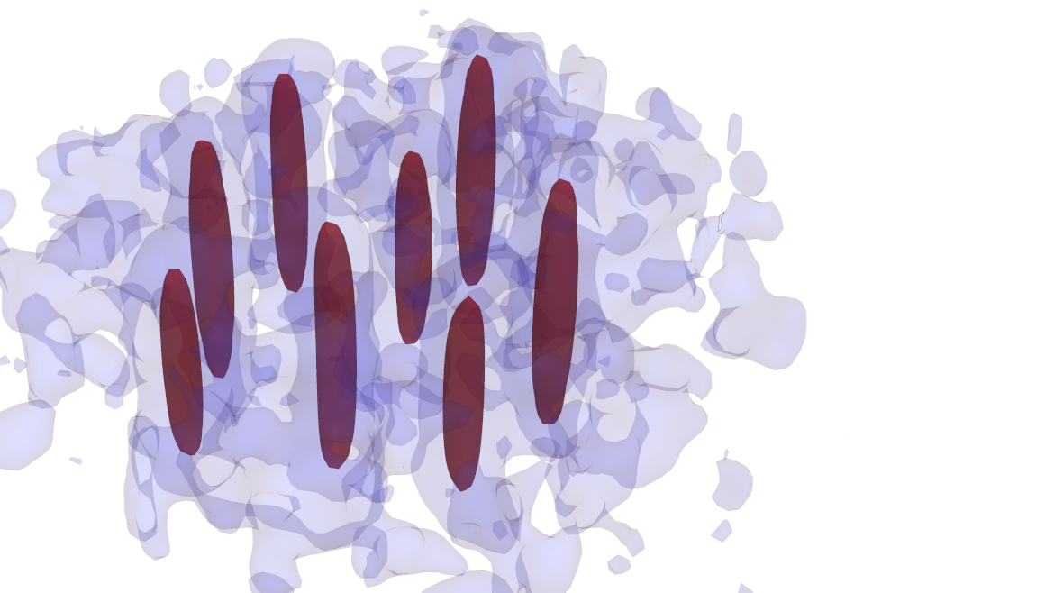 Review article and PRX paper discuss quantum droplets and supersolid states in dipolar quantum gases and unravel the importance of density fluctuations in the superfluid-supersolid phase transition.