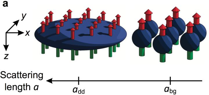 Quantum ferrofluid (c)